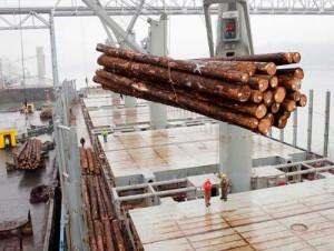 Транспортировка древесины морем